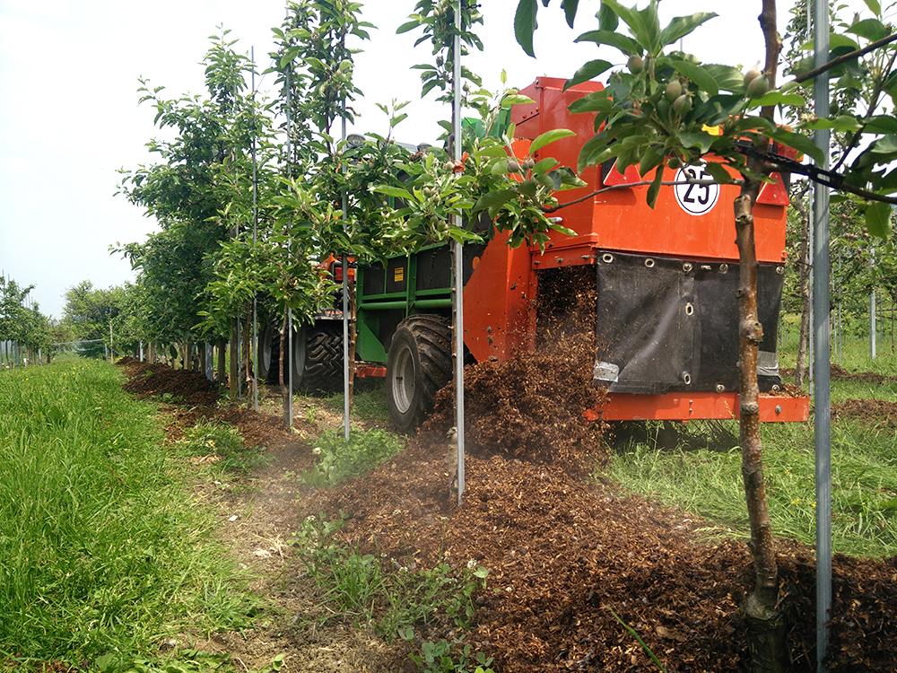 Baumstreifenbearbeitung Abdeckung mit organischem Material