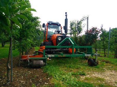 Baumstreifenbearbeitung mechanisch