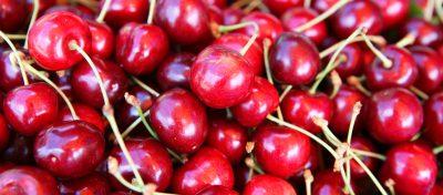 Kirschen Stausee-Obst